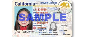"Image of sample ""REAL I.D."" taken from Department of Motor Vehicles website."