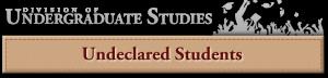 undeclared logo