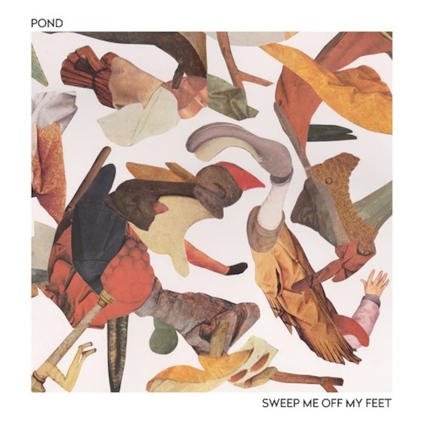 pond-sweep